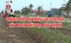Thông báo hệ thống quy hoạch cây xanh trên địa bàn Thị xã